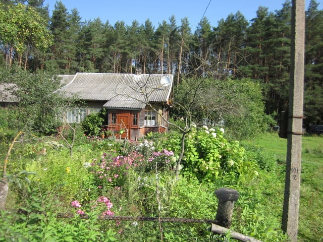 ליטא הכפרית